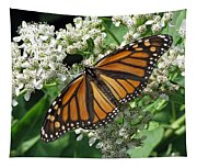 Monarch Butterfly 62 Tapestry