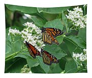 Monarch Butterfly 63 Tapestry