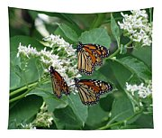 Monarch Butterfly 64 Tapestry