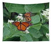 Monarch Butterfly 68 Tapestry