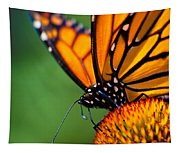 Monarch Butterfly Headshot Tapestry