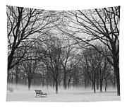 Monarch Park Ground Fog Tapestry