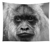 Monkey Eyes Tapestry