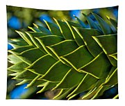 Monkey Puzzle Tree D Tapestry