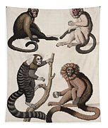 Monkeys Tapestry