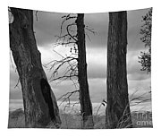 Monochrome Trees Tapestry