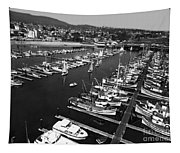 Monterey Marina With Fishing Boats In Slips Sept. 4 1961  Tapestry