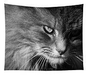 Moody Cat Tapestry