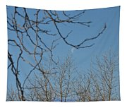 Moon On Treetop Tapestry