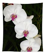 Moon Orchid With Purple Center Tapestry