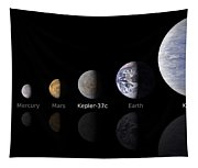 Moon Size Line Up Tapestry