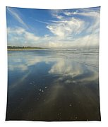 Moonstone Beach Reflections Tapestry