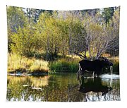 Moose Reflection Tapestry
