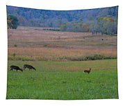 Morning Deer In Cades Cove Tapestry
