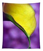 Morning Dew Tapestry