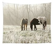 Morning Frost Tapestry