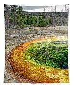 Morning Glory Pool - Yellowstone Tapestry