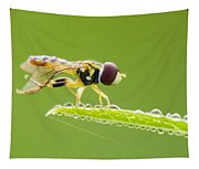 Morning Hoverfly Tapestry