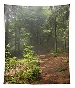 Morning In The Forest Tapestry