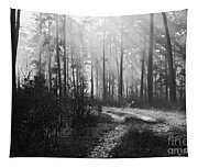 Morning Mist In Monochrome Tapestry