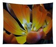 Morning Tulip Tapestry
