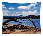 Moruya Tapestry