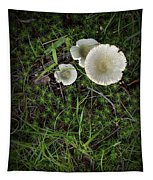 Moss And Fungi Tapestry