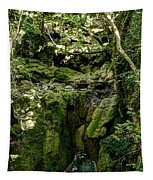 Moss And Stones By The Turquoise Forest Pond On A Summer Day No4 Tapestry