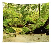 Moss Covered Rocks In Forest, Rocky Tapestry