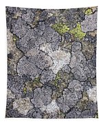 Mossy Mouldy Rock Texture Tapestry