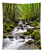 Mossy Mountain Stream Tapestry
