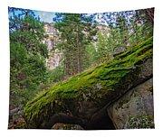 Mossy Rocks Along Vernal Falls Trail Tapestry