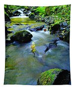 Mossy Rocks And Moving Water  Tapestry