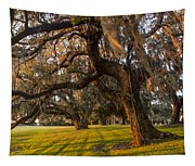 Mossy Trees At Sunset Tapestry