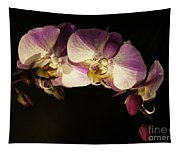 Moth Orchids Tapestry