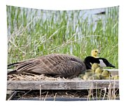 Mother Goose 2 Tapestry