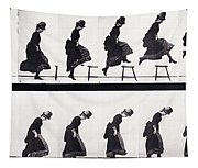 Motion Study Tapestry
