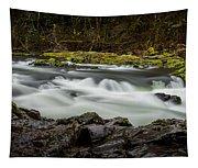 Moulton Falls 1 Tapestry