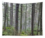 Mount Jim - Kinsman Notch New Hampshire Tapestry