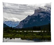 Mount Rundle And Vermilion Lake Tapestry