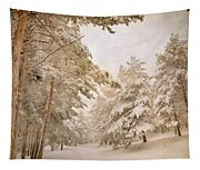 Mountain Adventure In The Snow Tapestry