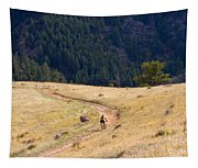 Mountain Biker Tapestry