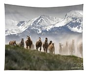 Mountain Dust Storm Tapestry