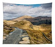 Mountain Path Tapestry