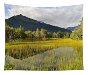 Mountain Reflection Tapestry