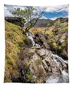Mountain River Tapestry