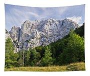 Mountain Scene Tapestry