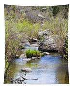 Mountain Stream In Castlewood Canyon State Park Tapestry