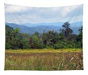 Mountain Valley Near Brevard Tapestry