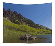 Mountains Co Maroon Lake 4 Tapestry